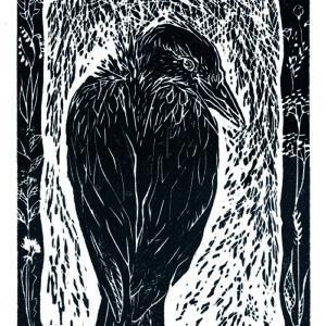 Holzdruck mit Rabenmotiv in Schwarzweiß Druckgrafik der Künstlerin Maren Rombold